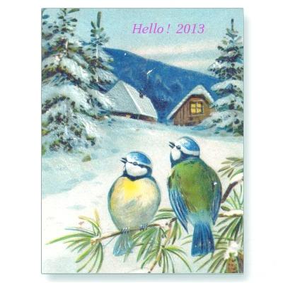 swedenbirds2013